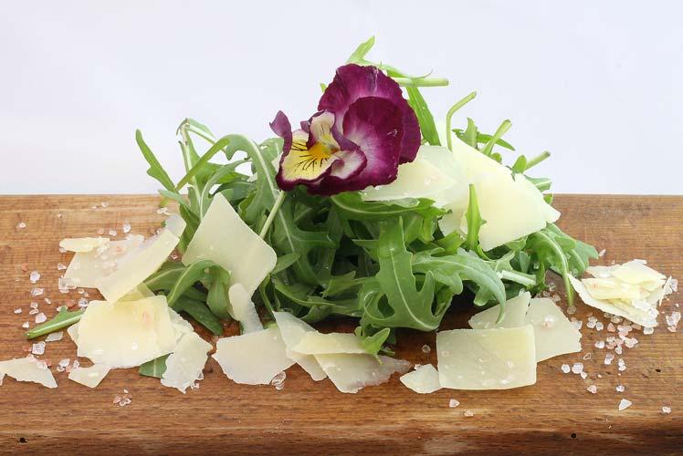 Rucola Parmezaanse kaas salade